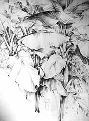 "Fusain - 650/500 - ""Bananiers"""