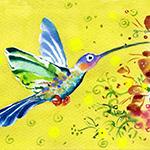 carre_colibri