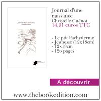 """""""Journal d'une naissance"""", 2011, auto-édition"""