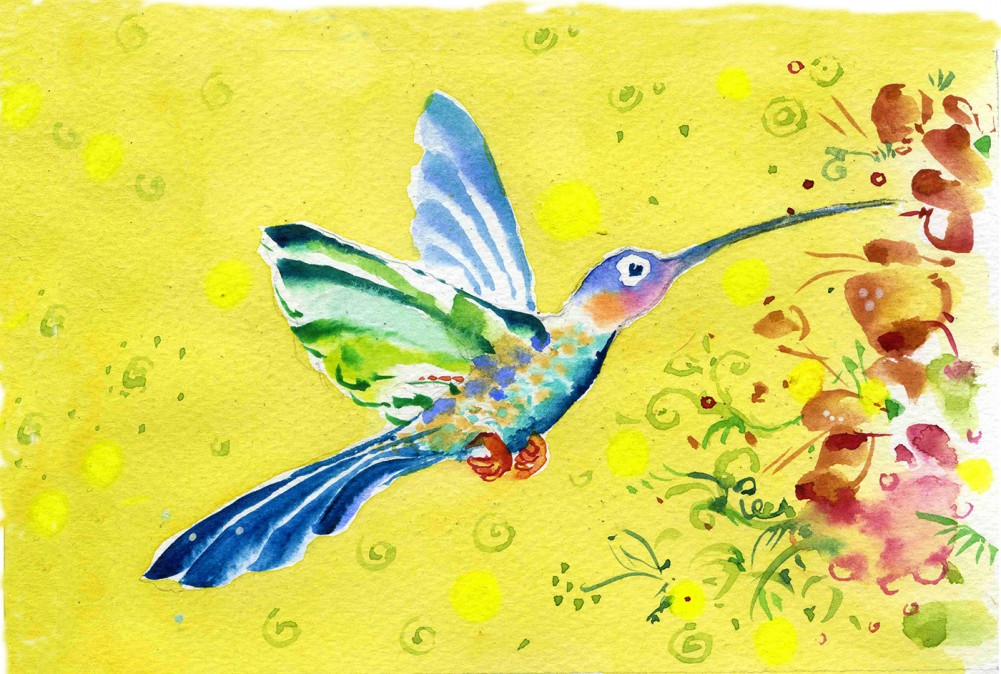 Le colibri dans le carnet AIR