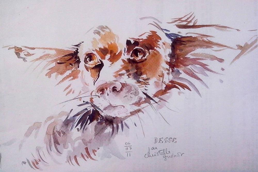 chien_besse1